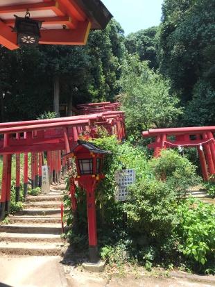 Transcendence at Kinko-Inari
