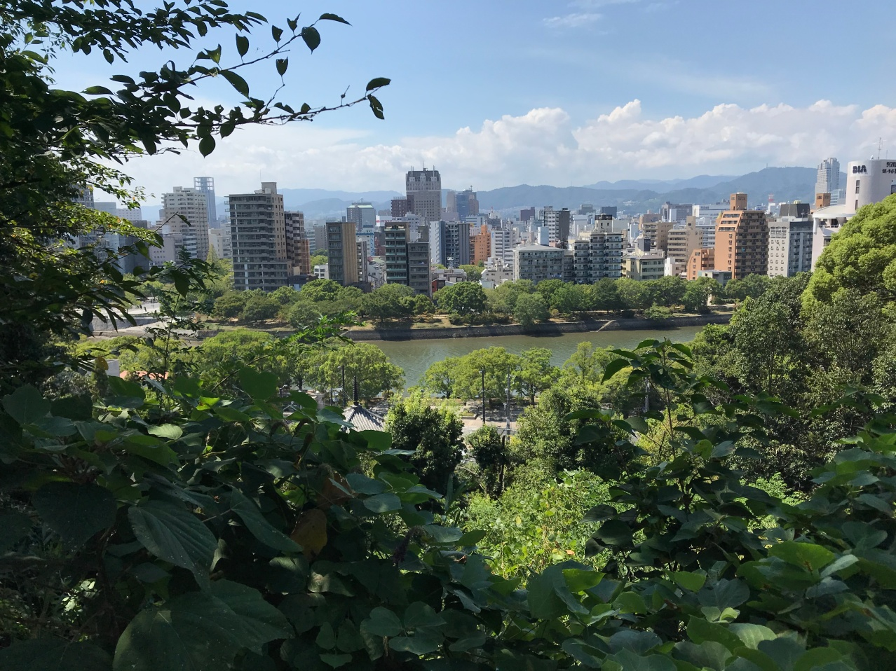 Hijiyama City View.JPG