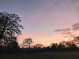 Verulamium sunset